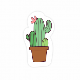 Cute Cactus Vinyl Stickwer
